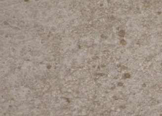 TD-DAS水泥基渗透结晶防水材料